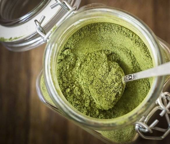 Reviews of Clients on Ideal Kratom Variants and Trainers