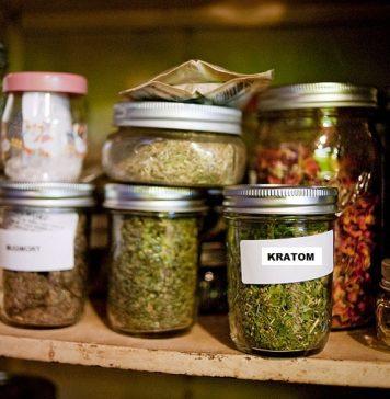 tips-storing-kratom-home