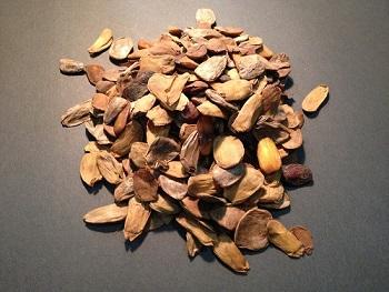 akuamma-seeds
