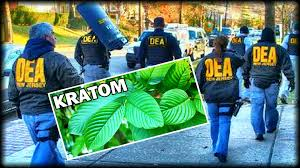 FDA and DEA on kratom