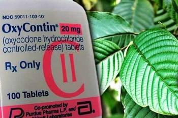 Big Pharma Does Not Like Kratom