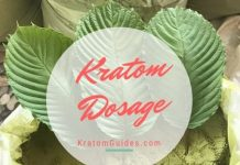 kratom dosage powder capsules