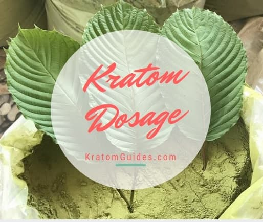 Correct Kratom Dosage In Powder And Capsules Form