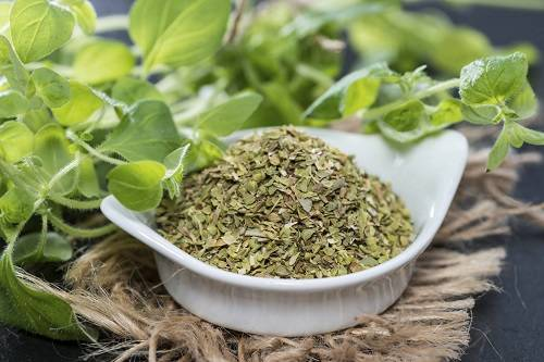 White Bali Kratom Review Dosage Benefits And Effects