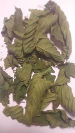 American Grown Kratom Leaves