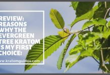 The Evergreen Tree Kratom