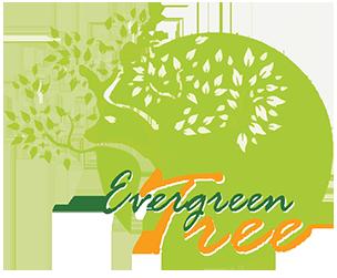 The Evergreen Tree Kratom