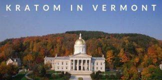 Kratom In Vermont