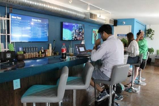 Lacuna Kava Bar