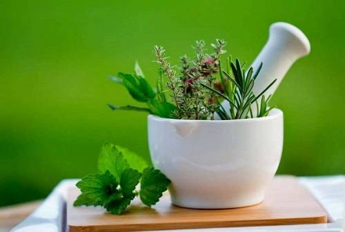 Euphoric Herbs